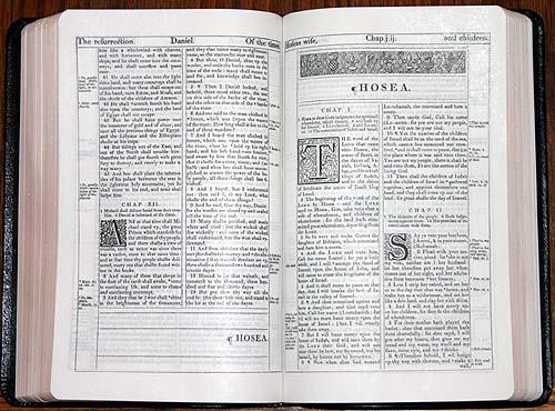 R. L. Allan KJV Longprimer in Brown Highland Goatskin |Open Kjv Bible