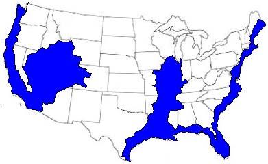 Iluminati - prorocanske karte Usagms
